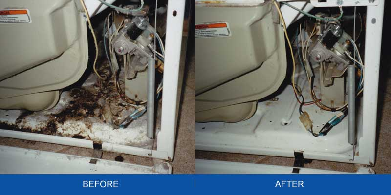 Before After Dirty Dryer Chicagoland Air Duct